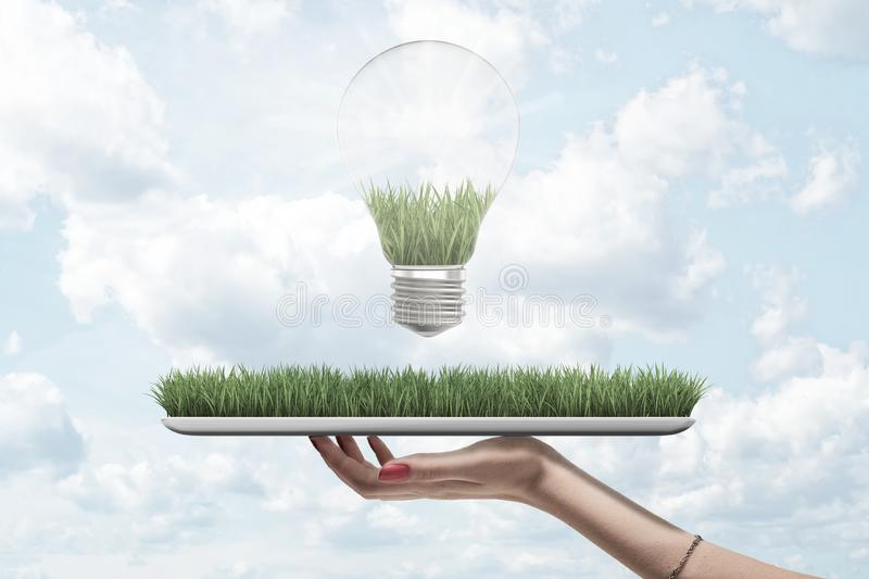 Side closeup of woman`s hand holding digital tablet with green grass on screen and lightbulb above against sky with royalty free stock photo