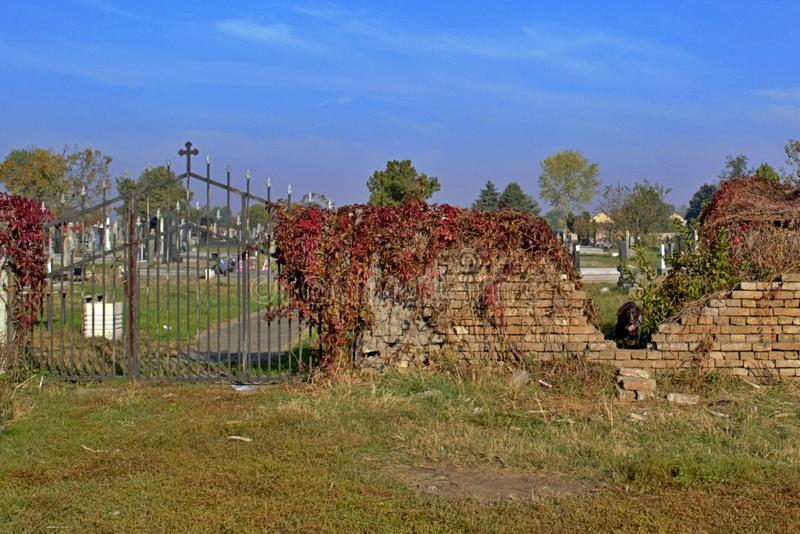 A side entrance to a village cemetery. The gates of paradise. peace and quiet and much wild vegetation stock photography
