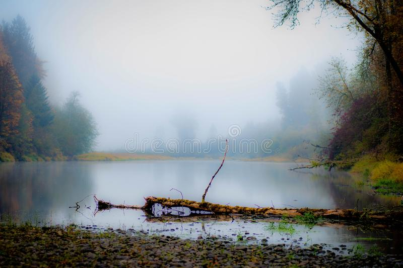 By the side of the river on a quiet misty autumn morning royalty free stock image
