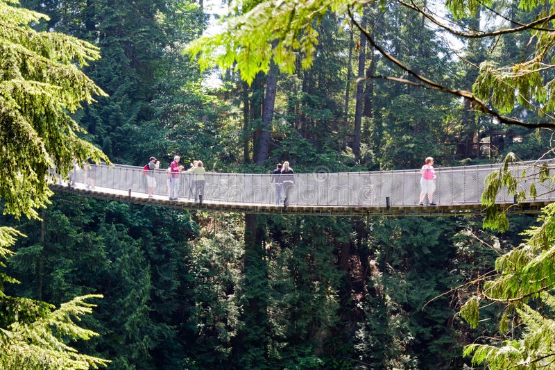 Side view of the Capilano suspension bridge in Vancouver, Canada stock photography