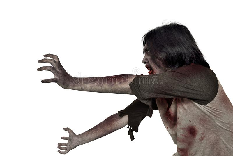 Side view of creepy zombie man with dirty hands standing. Isolated over white background royalty free stock image