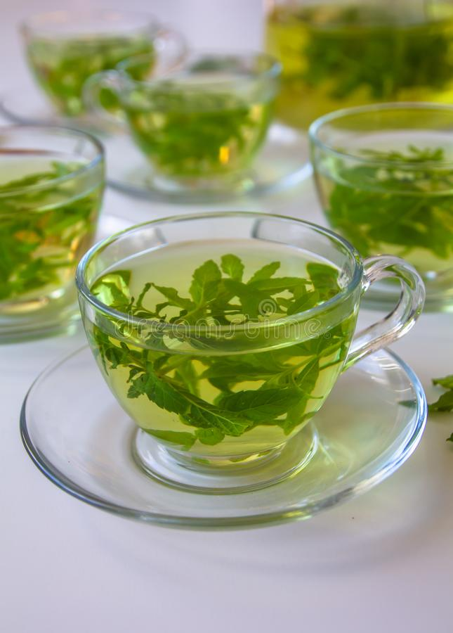 Side view of a Cup of healthy organic fresh herbs tea stock photography