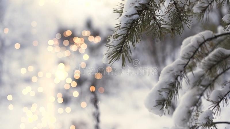 Side view of a girl running near tree branch with shining blurred fireworks on the background, christmas concept. Art royalty free stock image