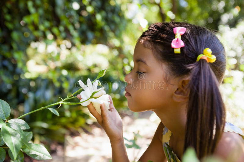 Side view of girl smelling white flower stock image