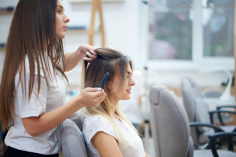 Side view of hairdresser doing bouffant to customer in beauty salon. Side view of attractive hairdresser doing bouffant to smiling female customer in beauty royalty free stock photo