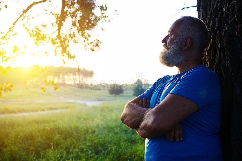 Side view of handsome aged man near the tree looking at the suns stock photography