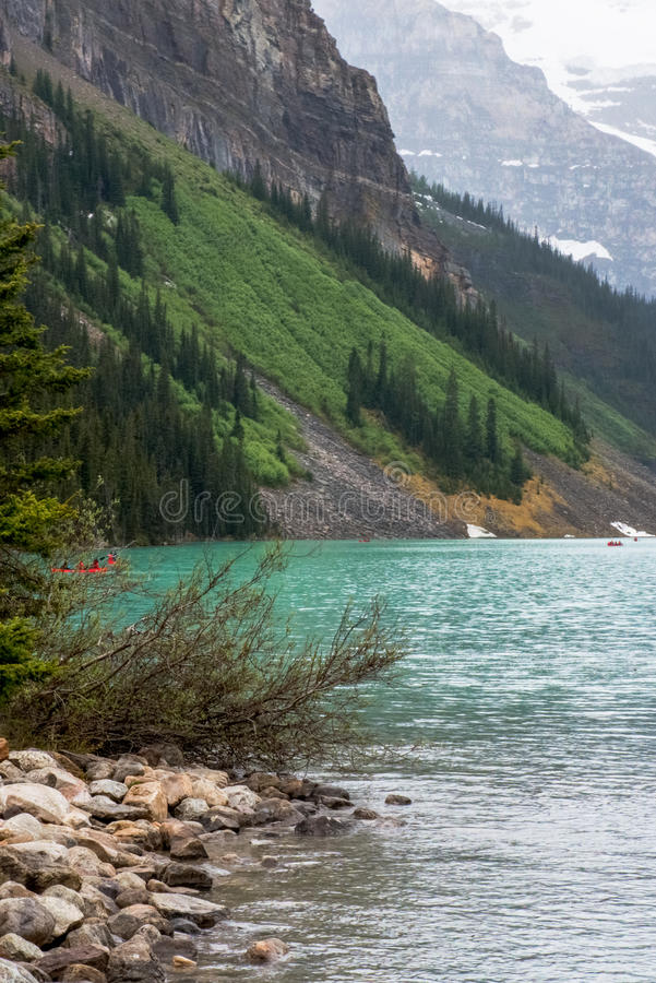 Side view Lake Louise in Banff Canada. Kayakers are exploring on Lake Louise in this image, crystal clear aqua blue water, rocky beach , green pines, rocky royalty free stock images