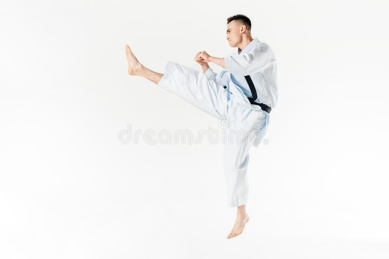 Side view of male karate fighter training. Isolated on white royalty free stock images