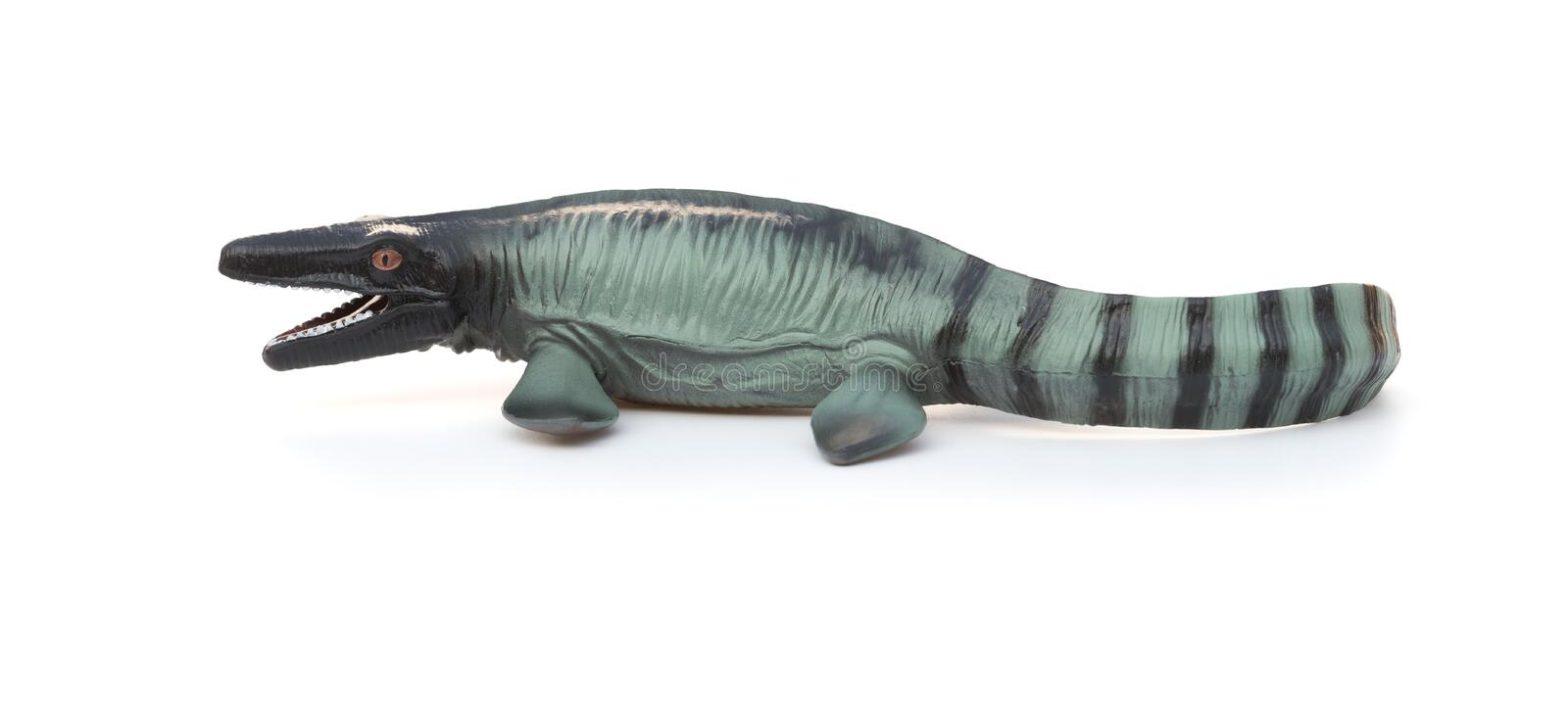 Side view Mosasaurus toy with shadow on white stock images