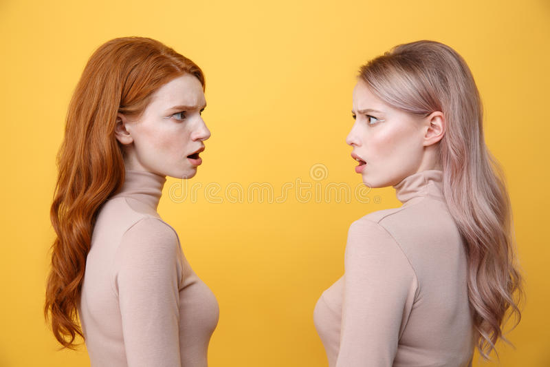 Side view picture of confused young two ladies stock images