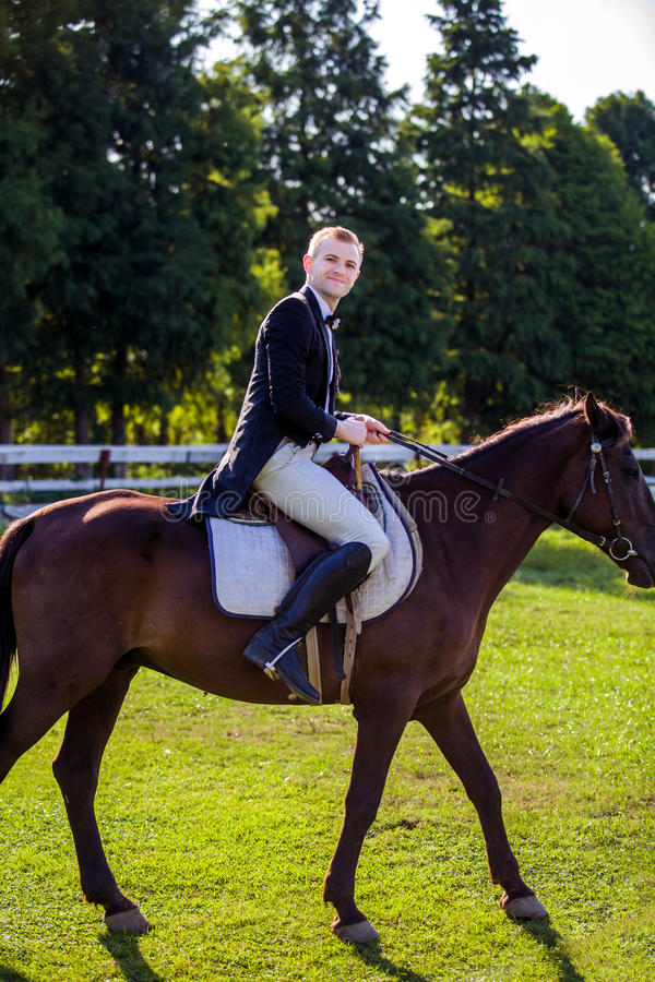 Side view portrait of man riding horse on field royalty free stock photography