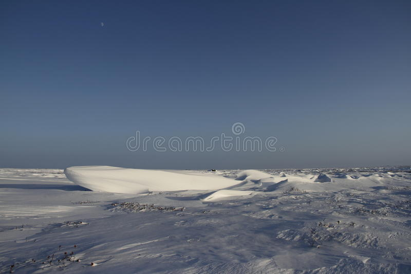 Side view of Sastrugi, wind carved ridges in the snow, near Arviat, Nunavut. Winter scene stock images