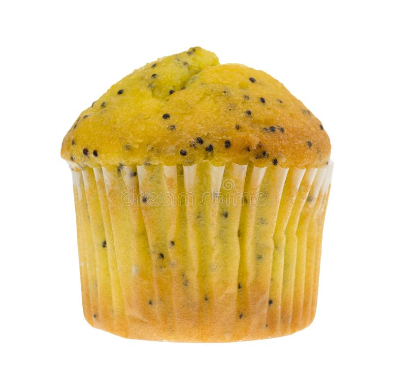 Bite size lemon poppy seed muffin royalty free stock photo