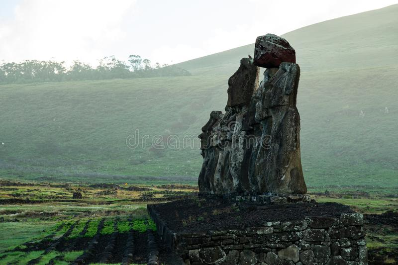 Side view at sunrise of Ahu Tongariki. Moai platform with mist in the background and bird over one Moai head stock images