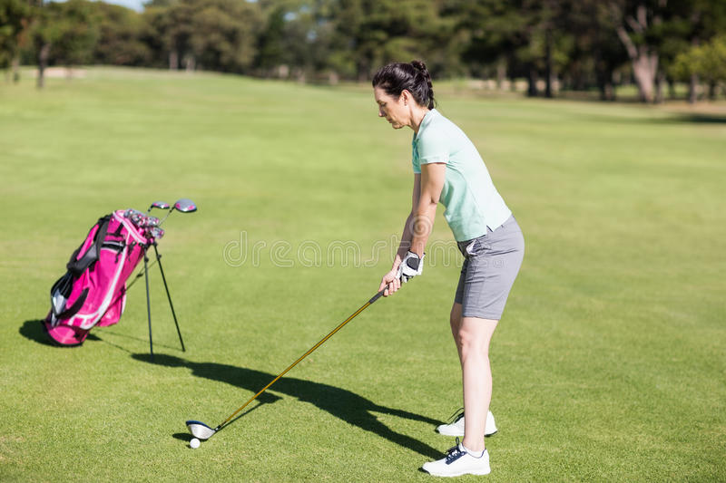 Side view of woman playing golf royalty free stock photo