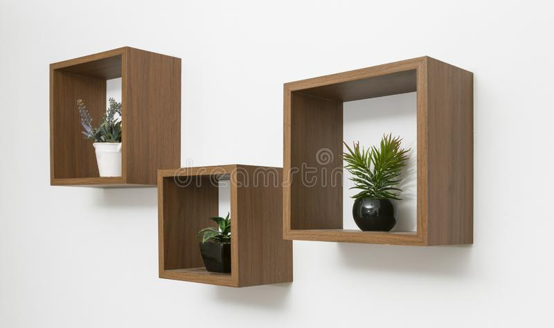 Side view of wooden shelves set on white wall with indoor plants pots. Side view of wooden shelves set on white wall with indoor plants royalty free stock images