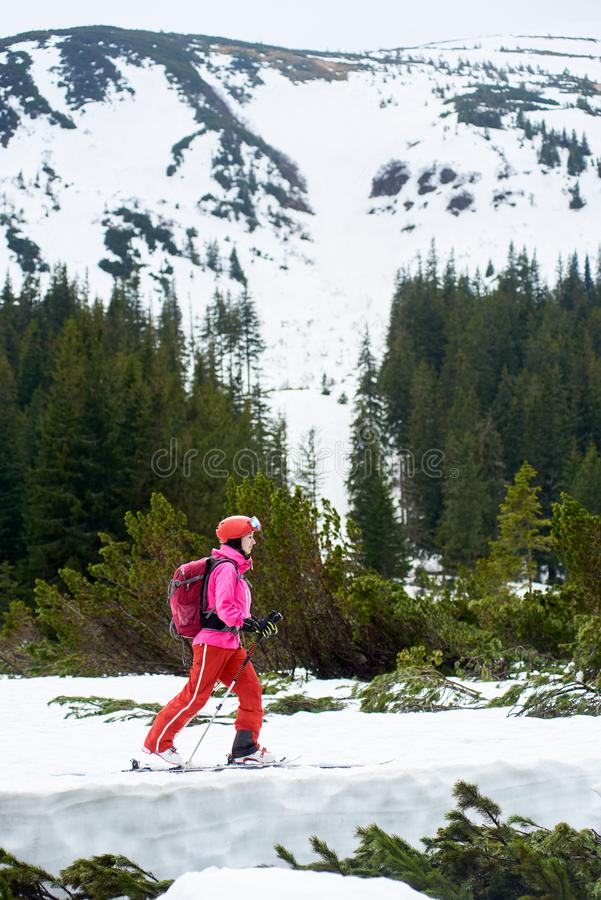 General side view of young female backpacker skier in pink suit ski touring, exploring winter mountains and skiing up royalty free stock photo
