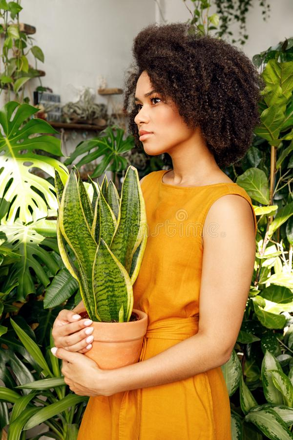 Side view of a young woman standing in her plant shop royalty free stock photo