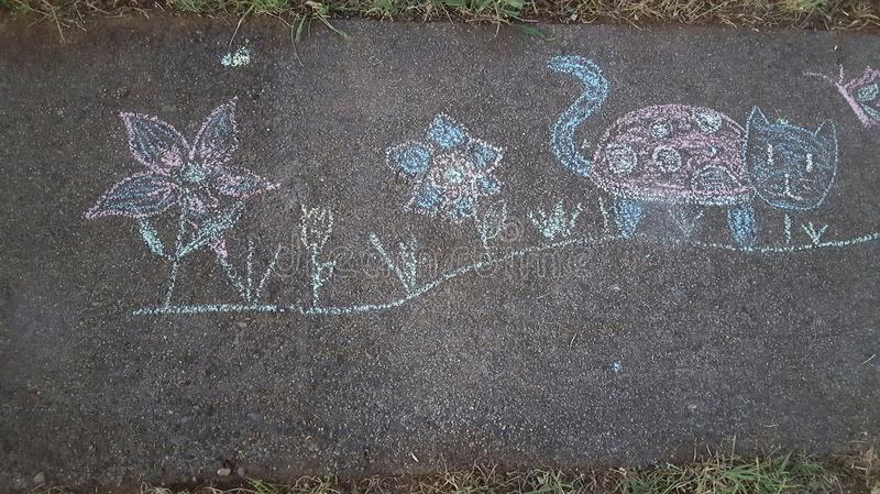 Side walk chalk flowers ladybug cat child fun stock photo