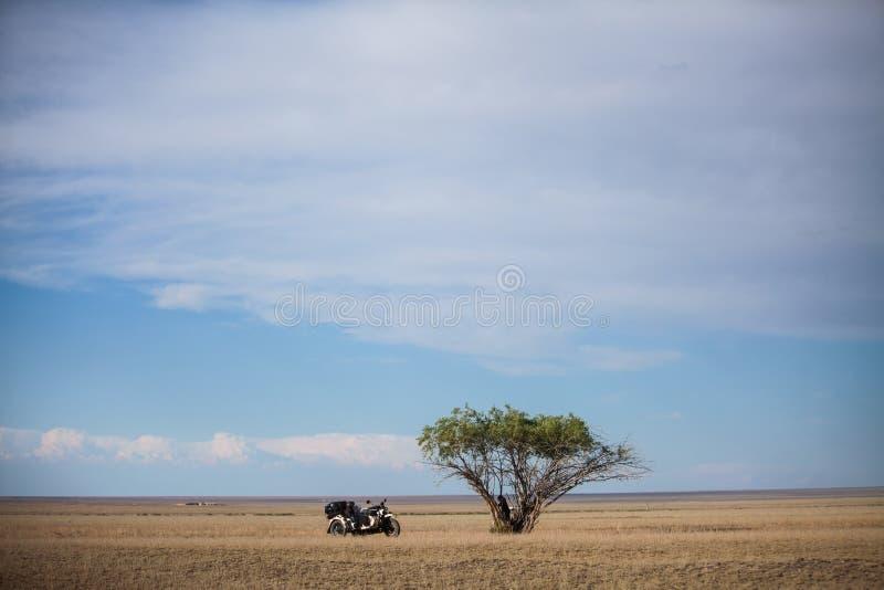 Sidecar motorfiets die naast een eenzame boom wordt geparkeerd royalty-vrije stock afbeeldingen