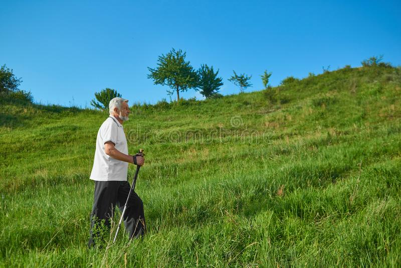 Sideview of old man walking with tracking sticks in mountains. Wearing white polo shirt with dark blue stripes,black trousers, sneakers. Cardioexercises stock images