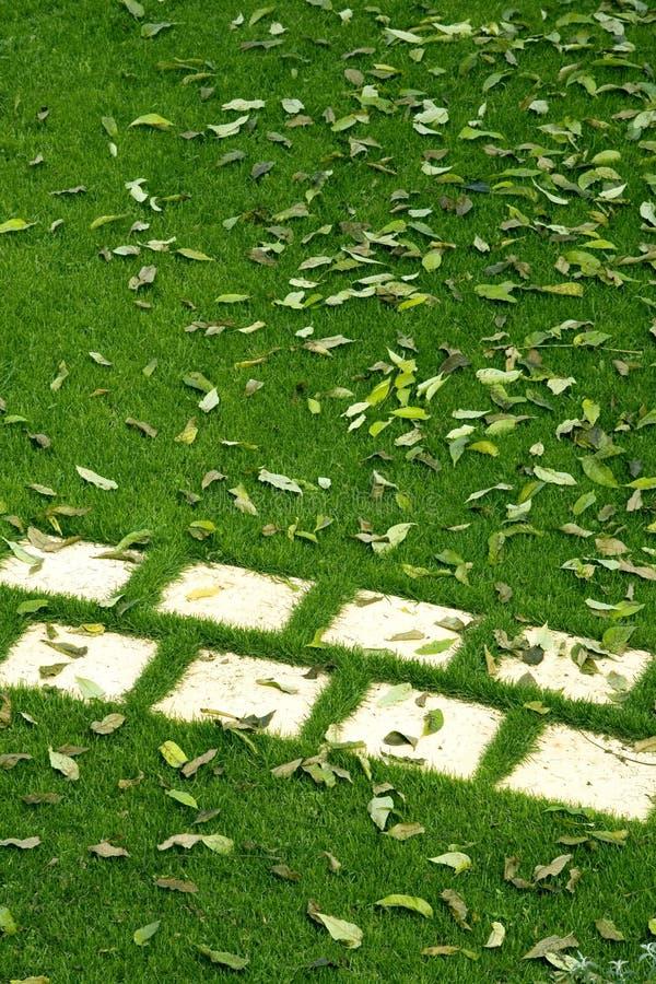 Download Sidewalk stock photo. Image of pavement, grass, rough - 11581238