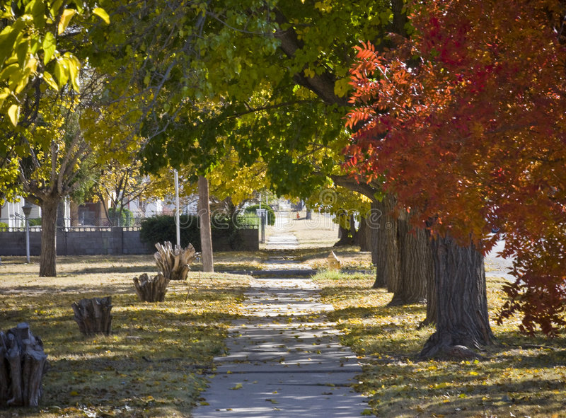 Sidewalk in Autumn royalty free stock photo