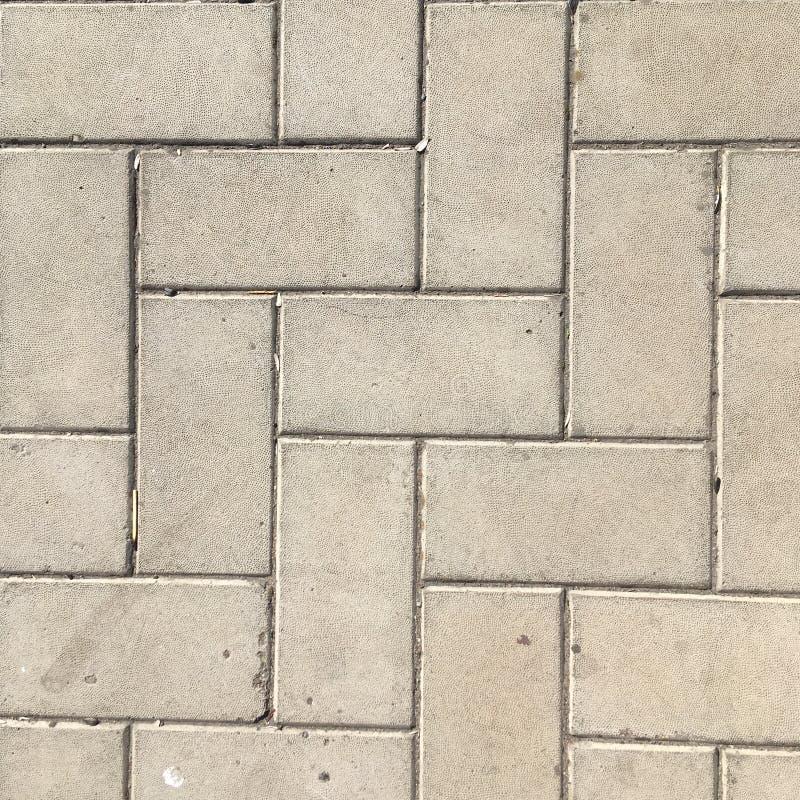 Sidewalk gray tile macro shot. Textural gray abstraction. Asphalt. Concrete. Cement. Paving slabs. Road. Way. Gray. Dark grey. Dusty asphalt. Wet asphalt stock photos