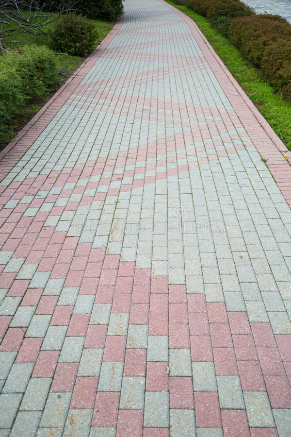 The sidewalk is made of rectangular pavers of gray pink color. Landscaping  of the city parks stock photo