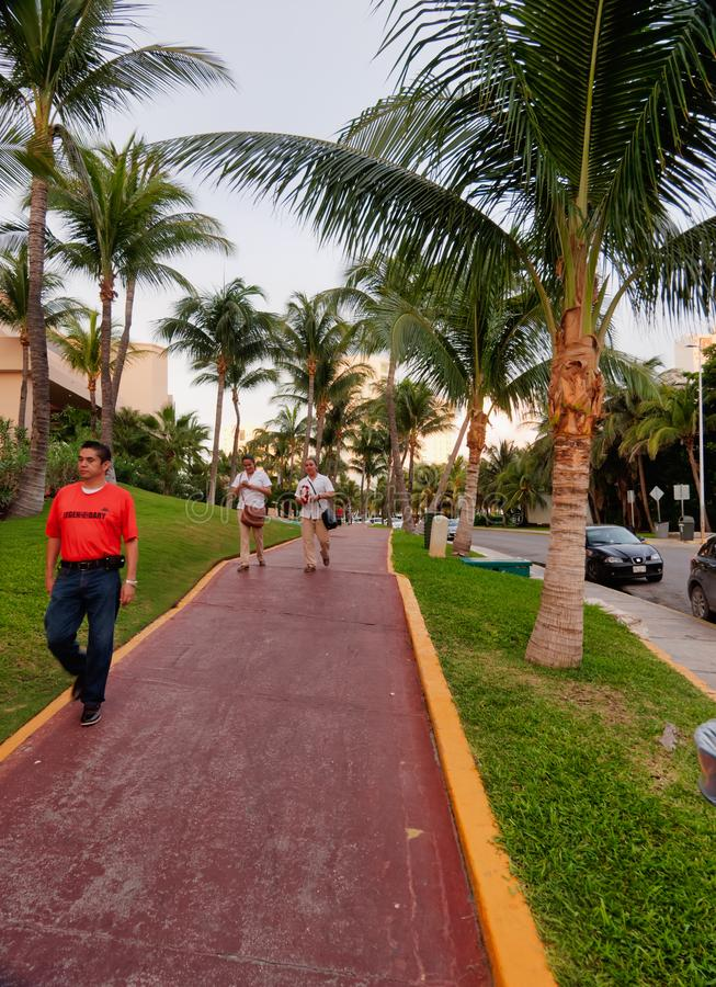 Sidewalk with palm trees in Cancun stock photography