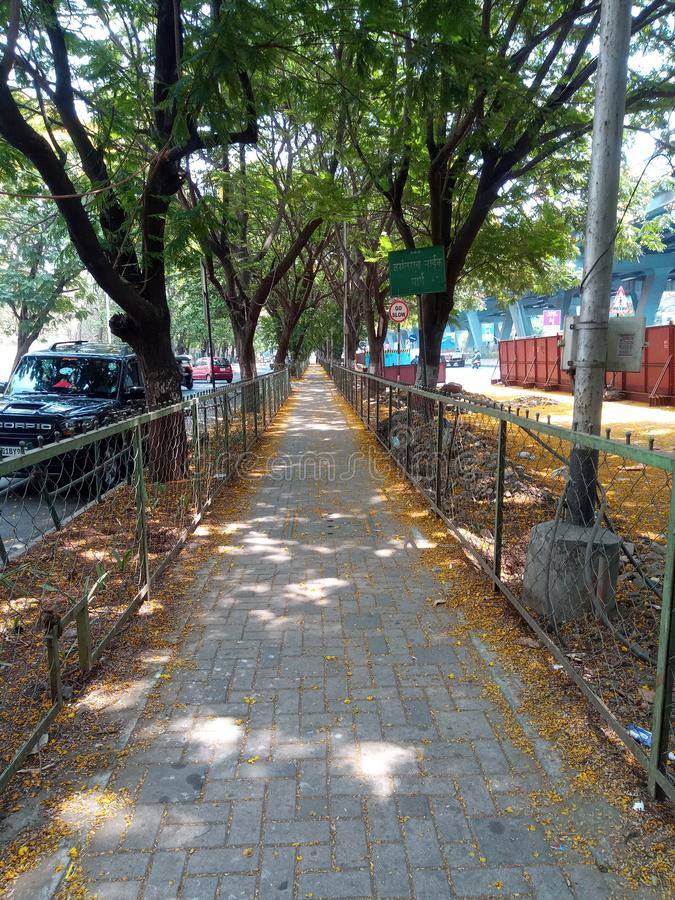 Sidewalk surrounded by trees in Thane royalty free stock image