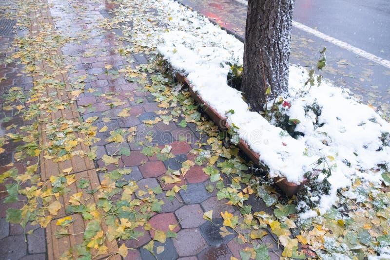 Sidewalk todo coberto por neve em Sapporo, Hokkaido Japão fotografia de stock