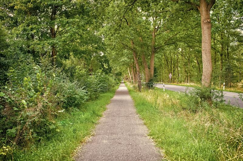 Sideway of countryside road in summer nature. Footpath with green trees and grass on sides. Direction and destination. Summer vacation travelling and stock photos
