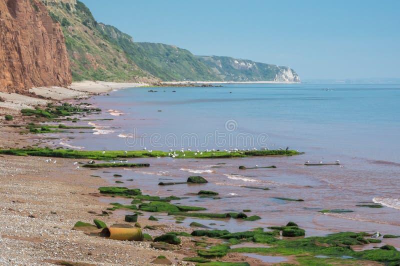 Sidmouth image libre de droits
