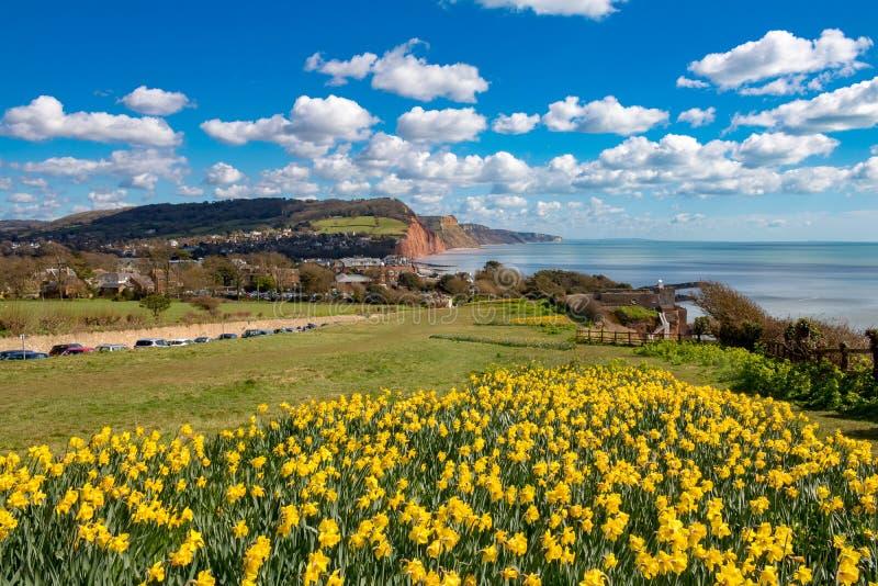 Sidmouth, Dorset, Inghilterra immagini stock libere da diritti