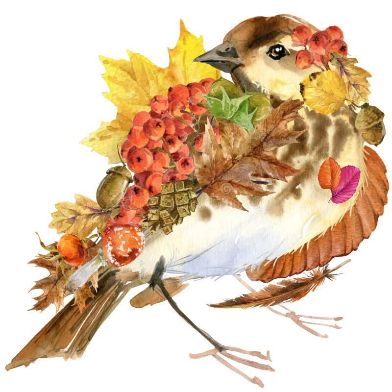 Sidor bakgrund, frukt, bär, champinjoner, gulingsidor, rosa höfter för natur för skogfågelhöst färgrika på svart bakgrund WA stock illustrationer