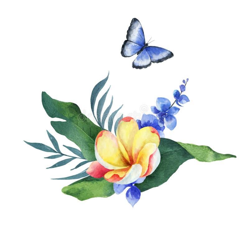 Sidor, blommor och fjäril för vattenfärgvektorsammansättning tropiska royaltyfri illustrationer
