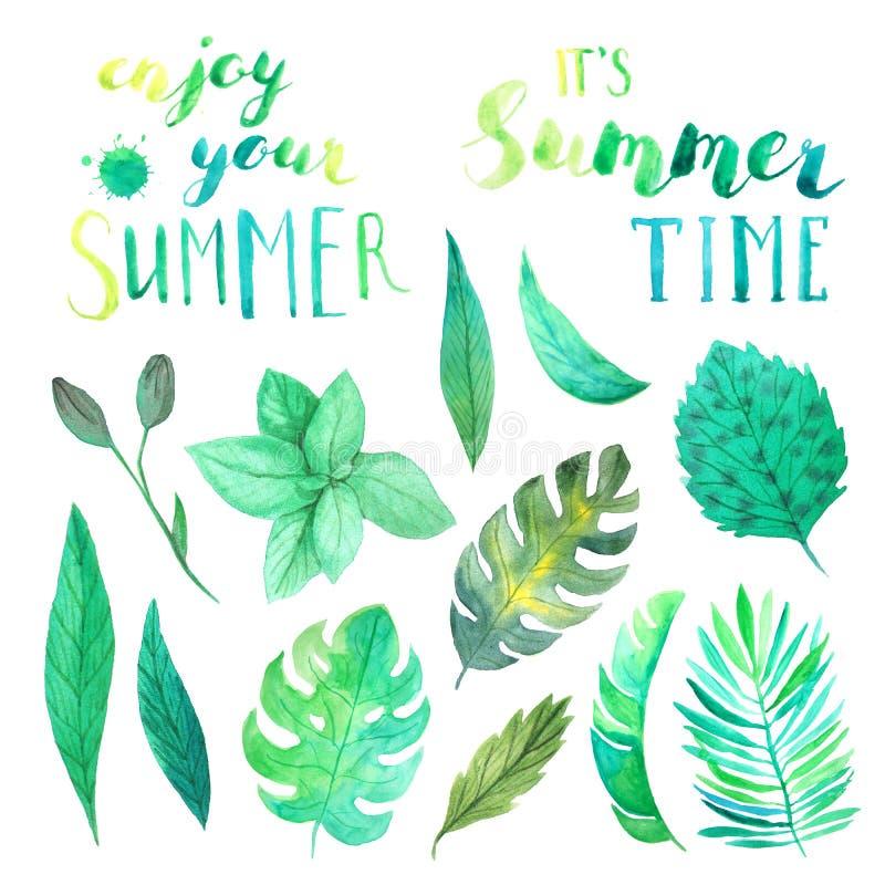 Sidor för för vattenfärgsommarbokstäver och gräsplan stock illustrationer