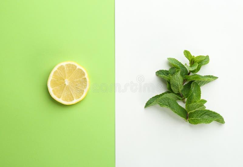 Sidor och citrusfrukt för ny mintkaramell royaltyfri foto
