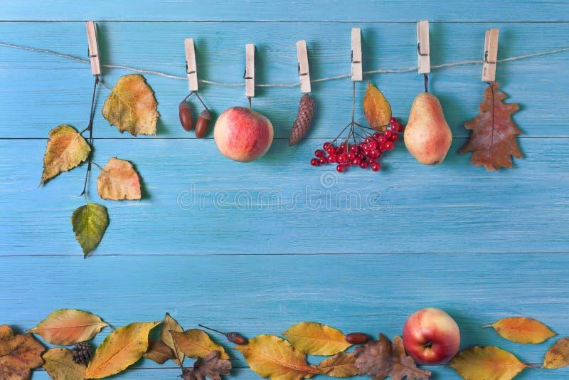 Sidor päron, äpplen, ekollonar i nedgången på en träbakgrund arkivfoto