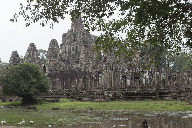 Sidosikt av den Angkor Thom templet och änder fotografering för bildbyråer