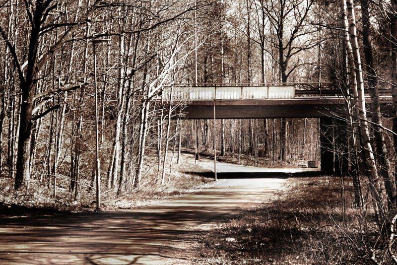 Sidosikt av en bro ?ver en cykelbana arkivbild