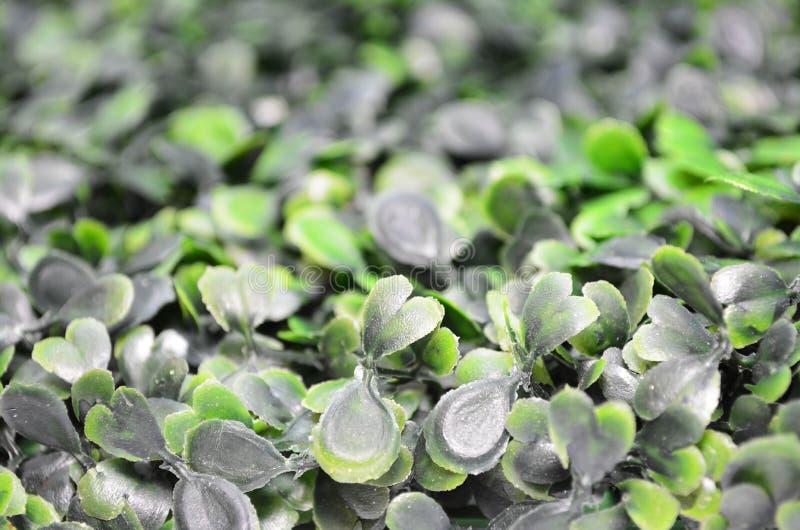 Sidosikt av grönt konstgjort gräs - selektiv fokus royaltyfri foto
