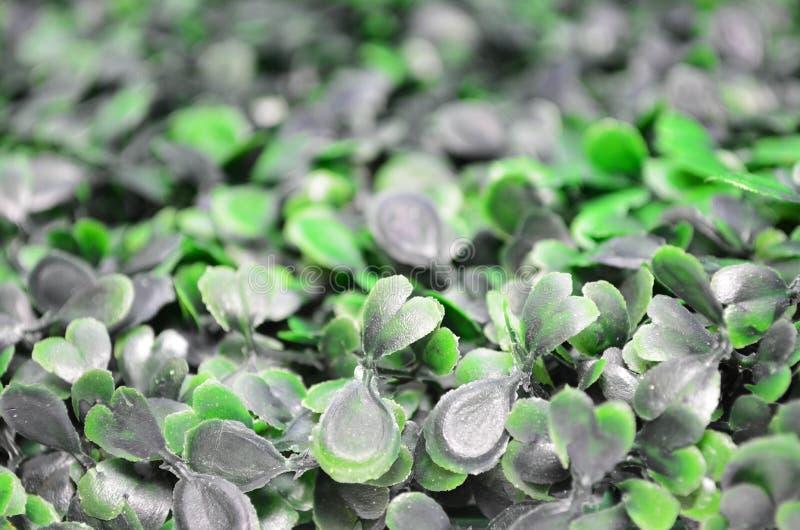 Sidosikt av grönt konstgjort gräs - selektiv fokus royaltyfria foton