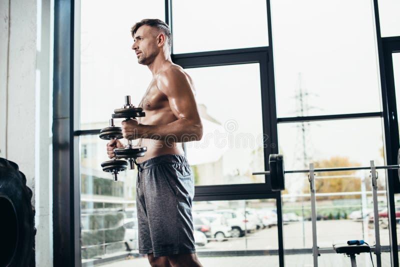 sidosikt av stilig shirtless idrottsmanutbildning med hantlar fotografering för bildbyråer