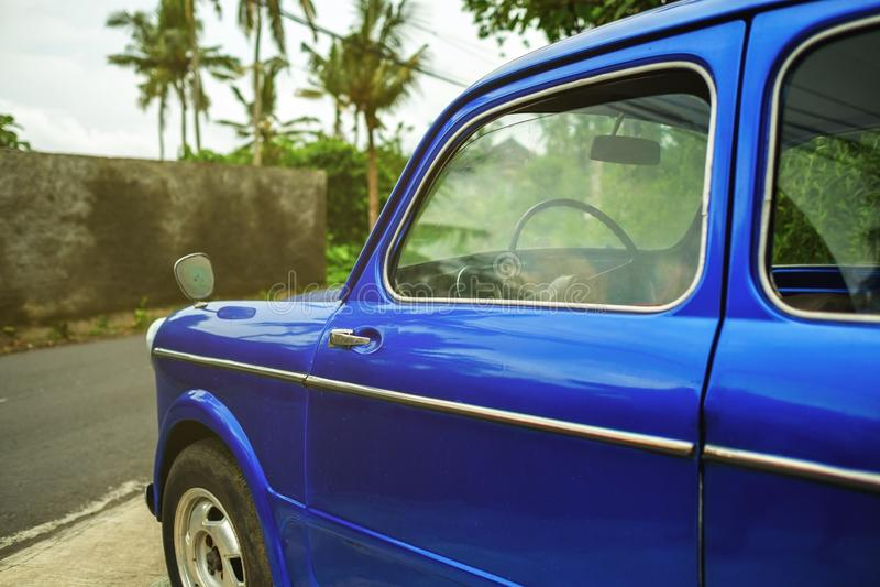 Sidosikt på den retro blåa bilen i tropisk stad Palms är på bakgrund royaltyfria bilder