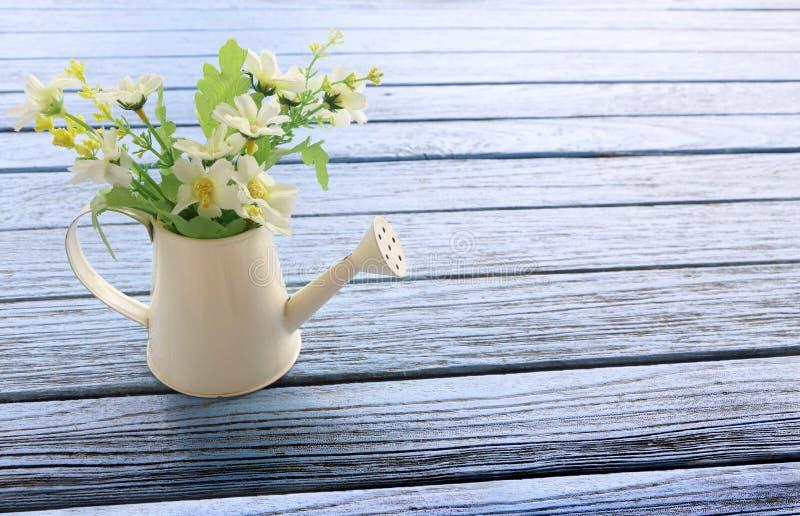 Sidosikten av den vita duschen som bevattnar kronbladet med många vit, fejkar blommainsidan på blå trätabellbakgrund, begreppsvår royaltyfria foton