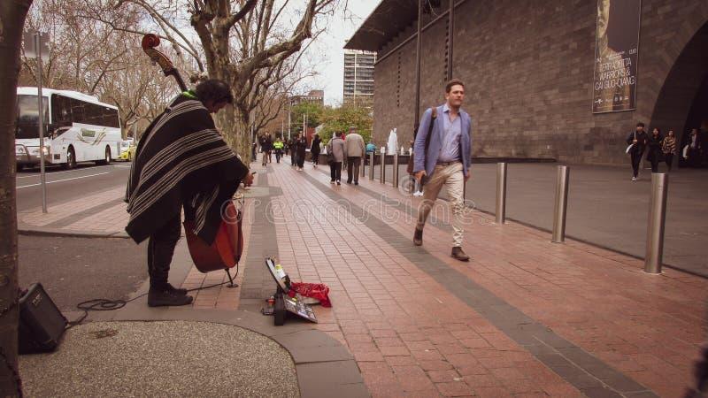 Sidosikten av en cellist spelar klassisk musik framme av ett museum fotografering för bildbyråer