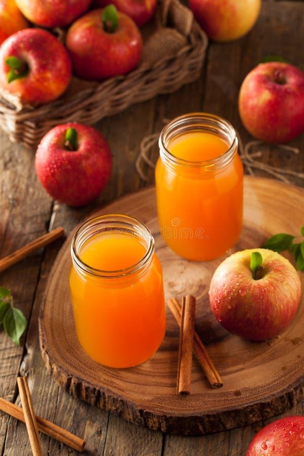 Sidra de Apple anaranjada orgánica fotografía de archivo libre de regalías