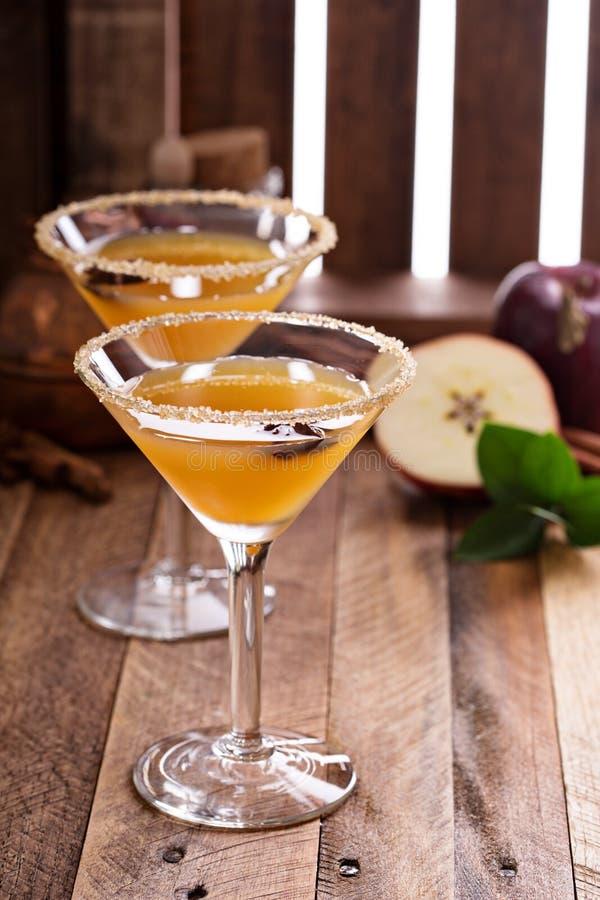 Sidra de Apple martini con anís de estrella imagen de archivo